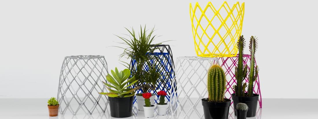 Artecnica ist ein US-amerikanisches Unternehmen. Die Produktpalette der bekannten Design-Marke beinhaltet unter anderem farbenfrohe, eindrucksvolle Accessoires.