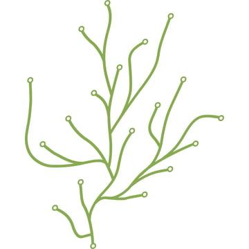 Vitra Algues, grün