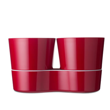Rosti Mepal - Twin Kräutertopf, rot