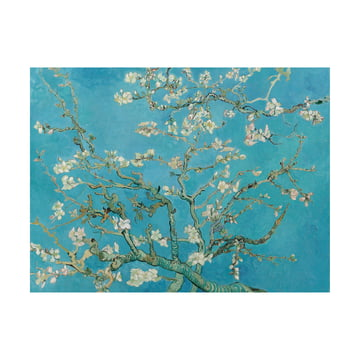 Mandelblüte (Vincent van Gogh) von IXXI