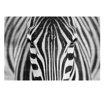 Zebra von IXXI in 180 x 120 cm