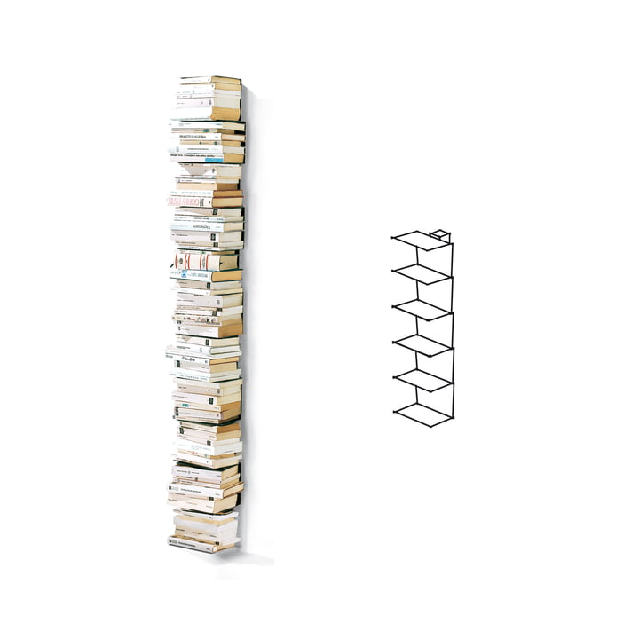 Opinion Ciatti - Ptolomeo Wand-Bücherregal PTW67