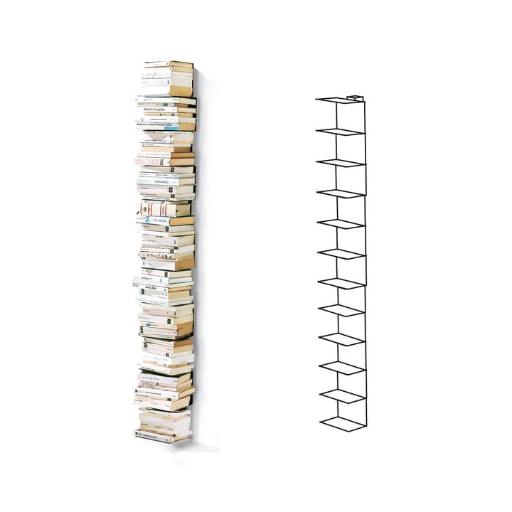 Opinion Ciatti - Ptolomeo Wand-Bücherregal PT155