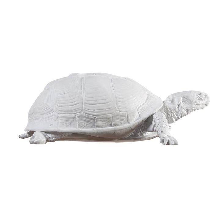 Die Turtle Box von Areaware, weiß