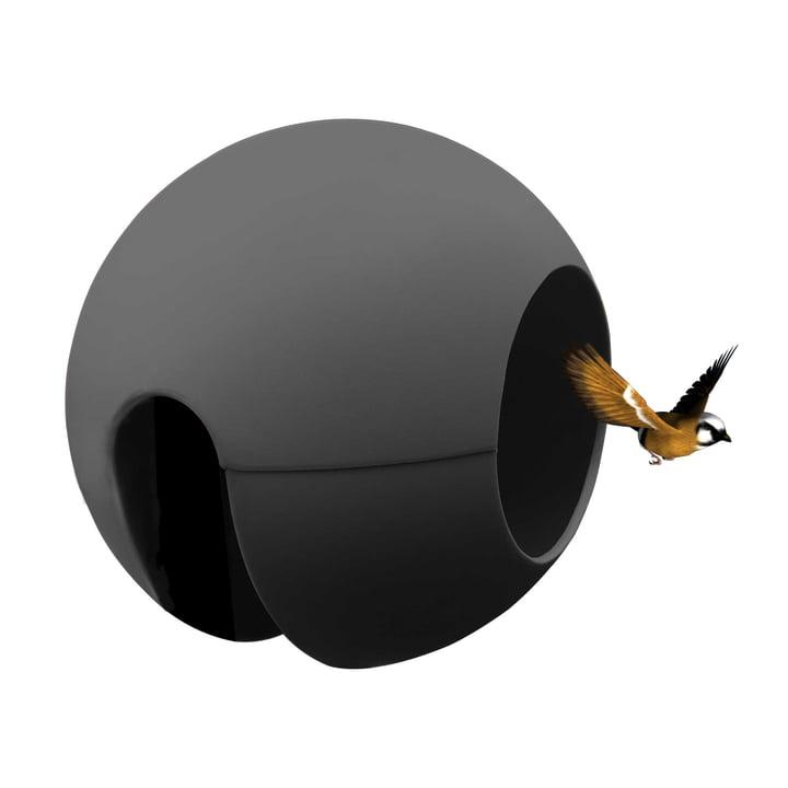 Die rephorm - ballcony birdball Futterstelle in graphit
