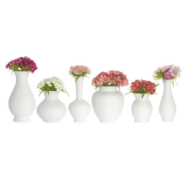 Blossom Vasen-Set von Schönbuch