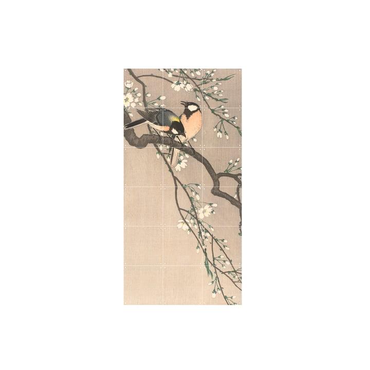 Kohlmeisen auf einem Kirschbaum (Koson) 60 x 120 cm von IXXI