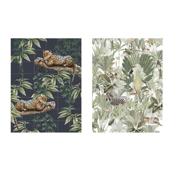 Chilling in the Jungle & Into the Wild 120 x 160 cm von IXXI