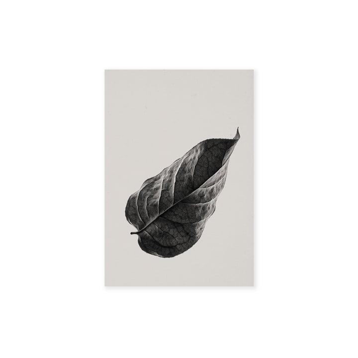 Sabi Leaf 01 30 x 40 cm von Paper Collective