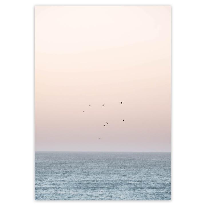 artvoll - Sunset on the Horizon Poster