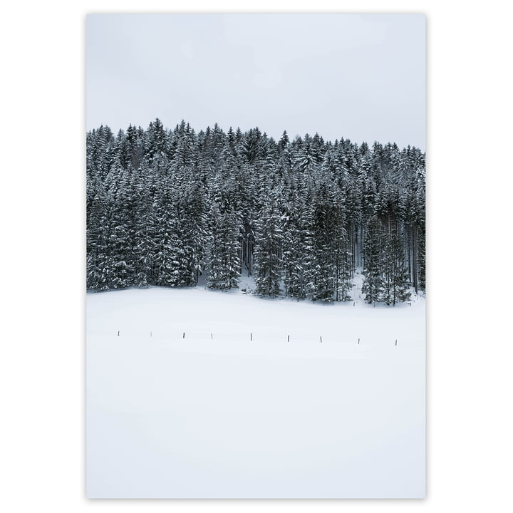 artvoll - Winter Wonderland Poster