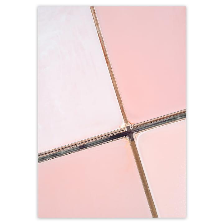 artvoll - Salt Flat No. 1 Poster, rosa