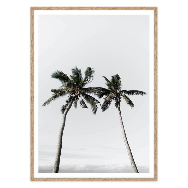 artvoll - Palm Tree II Poster mit Rahmen, Eiche natur