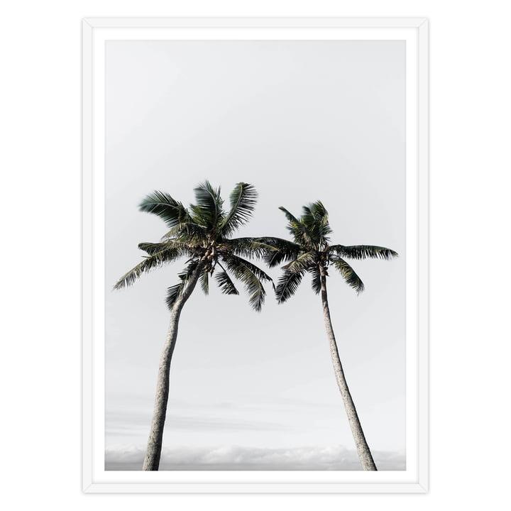 artvoll - Palm Tree II Poster mit Rahmen, weiß