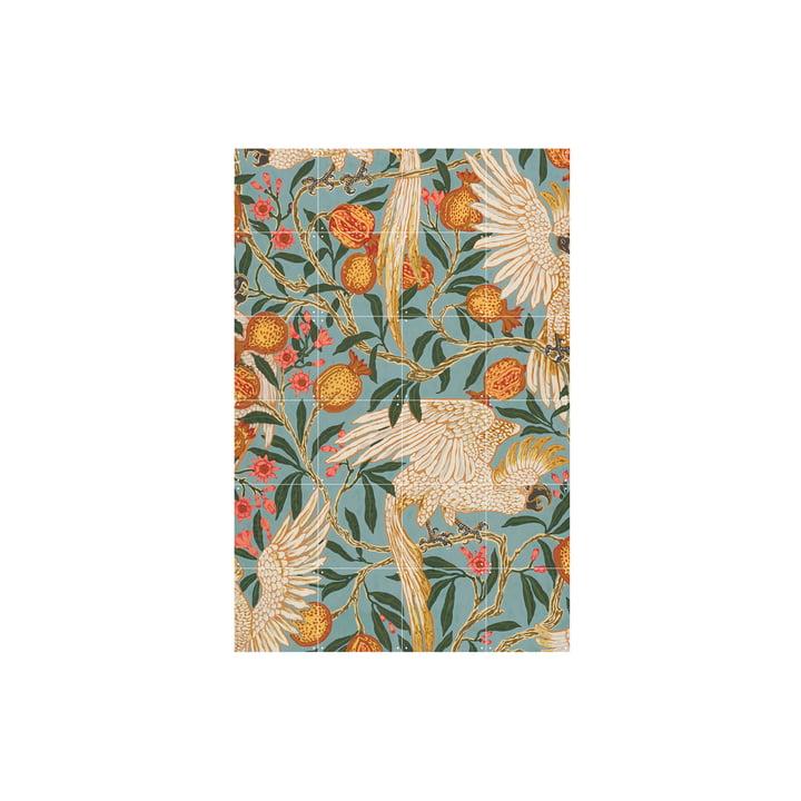 Kakadu- und Granatapfeltapete (Crane) 80 x 120 cm von IXXI