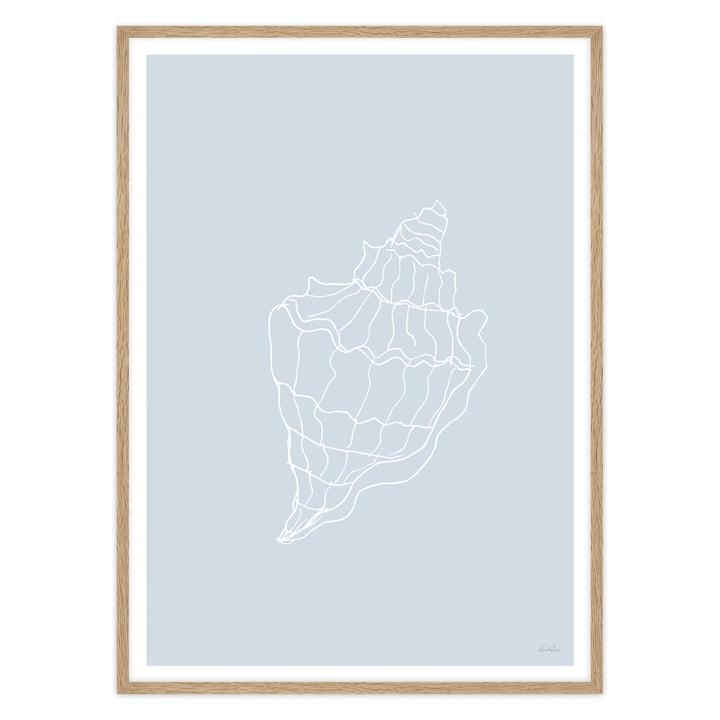 Hellblaues Poster mit Muschel und Eichen-Rahmen