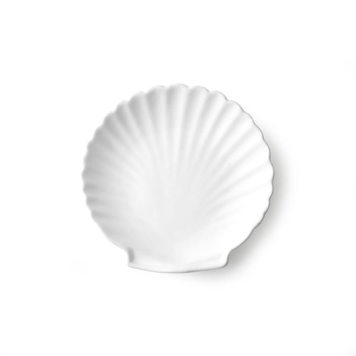 Athena Muschel Tablett M von HKliving in weiß