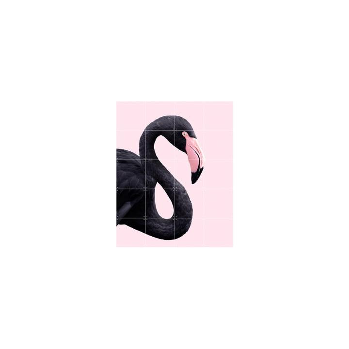 Black flamingo Poster, 80 x 100 cm von IXXI