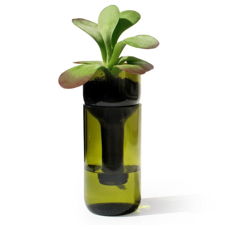 Der Self Watering Bottle Blumentopf von side by side in grün