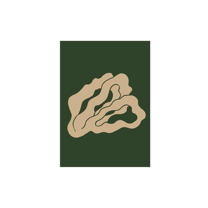 Das Coral 02 Poster von Paper Collective, 30 x 40 cm