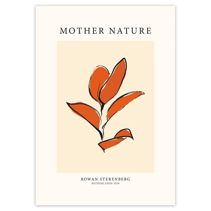 Das Mother Nature, Orange Leaf - Poster von artvoll ohne Rahmen