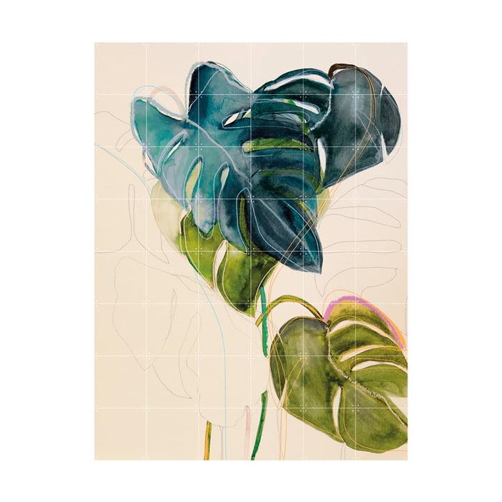 Blue Monstera Wandbild 120 x 160 cm von IXXI