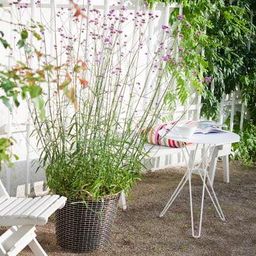 Drahtkorb für Pflanzen im Garten