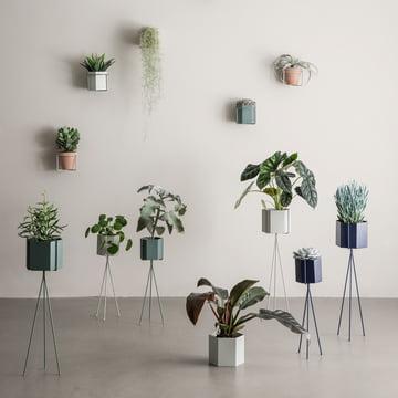 Alles für Pflanzen und Blumen von ferm Living