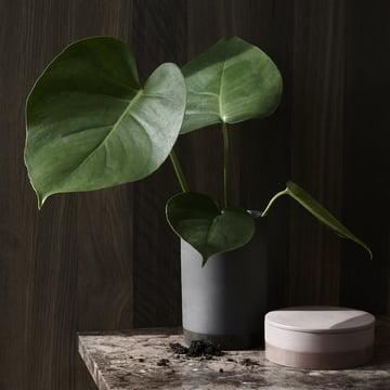 Die Cylindrical Vase in weiß