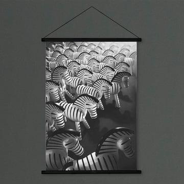 Zebra Foto von Kay Bojesen Denmark