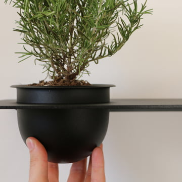 Shelve 01 von Nichba Design in Schwarz mit integriertem Pflanzentopf