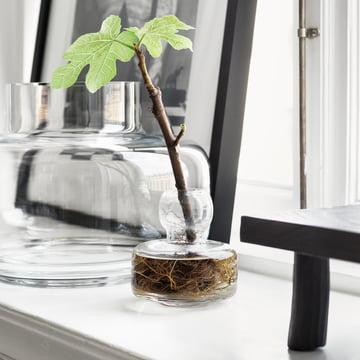 Flower und Urna Vase von Marimekko