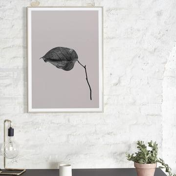 Paper Collective - Sabi Leaf 03, 50 x 70 cm über dem Tisch platziert