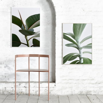 Paper Collective - Green Home 02 und 04