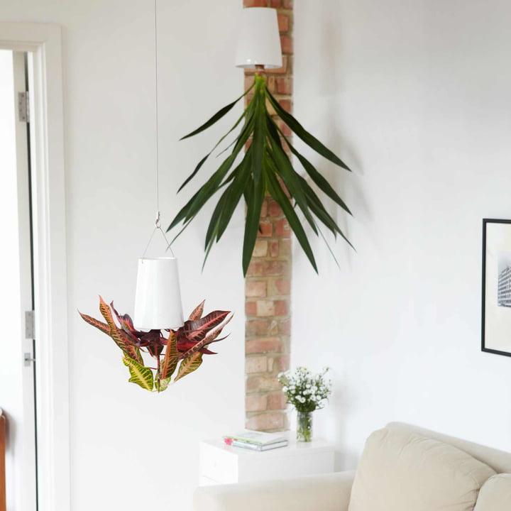 Sky Planter Ceramic von Boskke