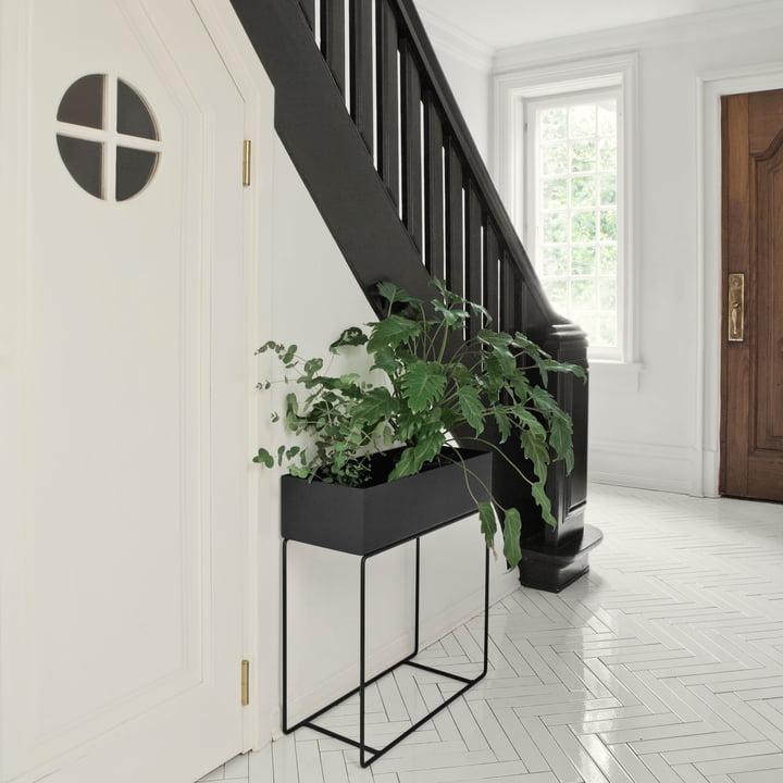 Plant Box von ferm Living in Schwarz
