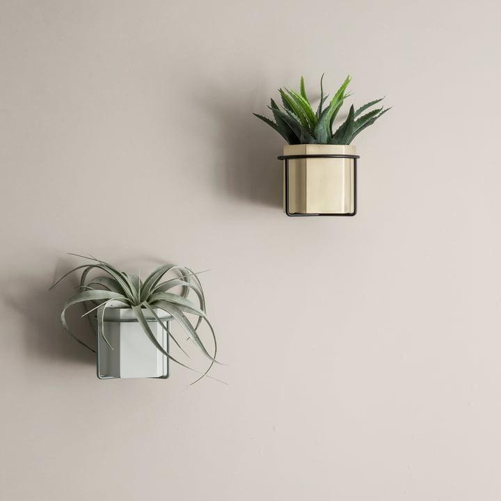 Hexagon Topf, Vase und Pflanzenhalter