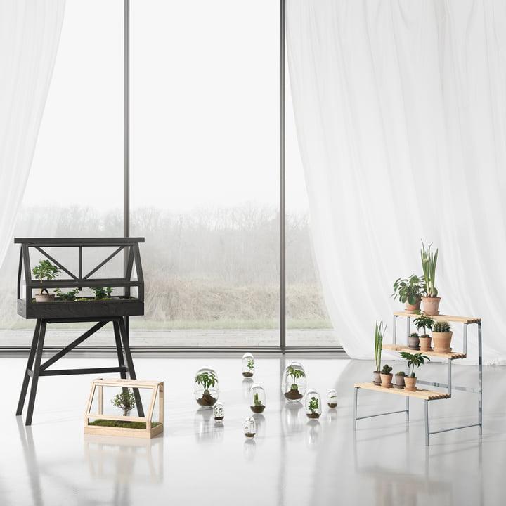 Flower Pot Stand und Greenhouse