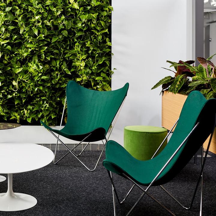 Butterfly Chair von Knoll